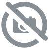 Boutons pression kam orange carotte